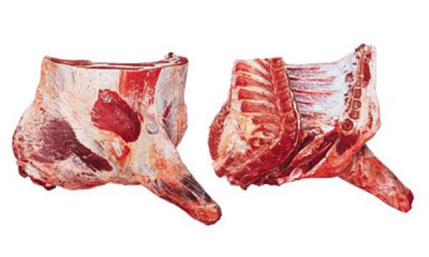 Forequarter without flank
