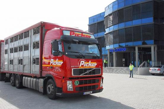 Truck in front of russian airport