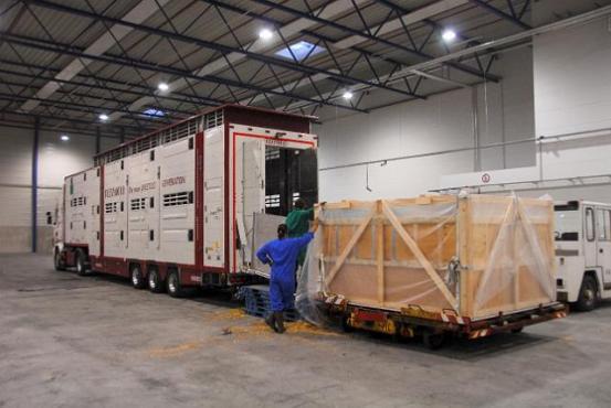Unloading truck in russia