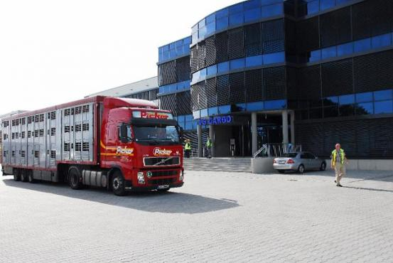 Kamion ispred ruske zračne luke